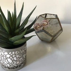 VINCE CAMUTO ROUND PINK CZ STUD EARRINGS WITH HALO
